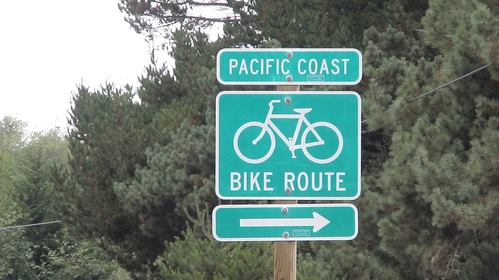Bicycling For Weight Loss >> Biking the Pacific Coast - I Love Bicycling
