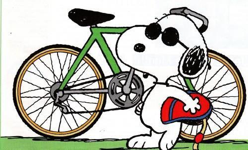 From Bike Riding to Bike Racing