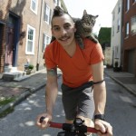 Cat Riding a Bike