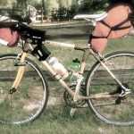 Penne: A Review of Bamboo Bicycle Frames