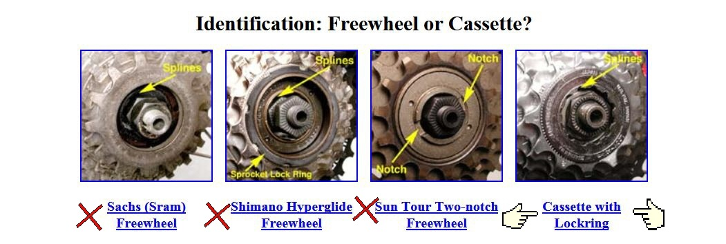 freewheel or freehub