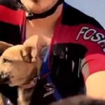 Bike Rider Rescues Deserted Puppy