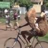 Do What You Gotta Do – Riding With…
