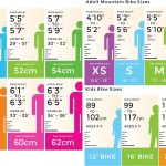 What Size Bike Should I Ride?
