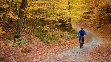 Why Fall Bike Rides Are Some of The Best of The Year