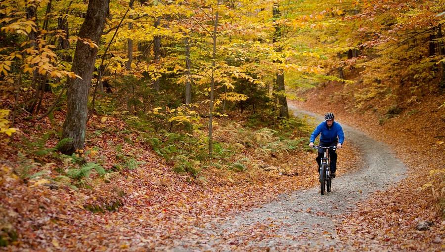 fall-bike-rides