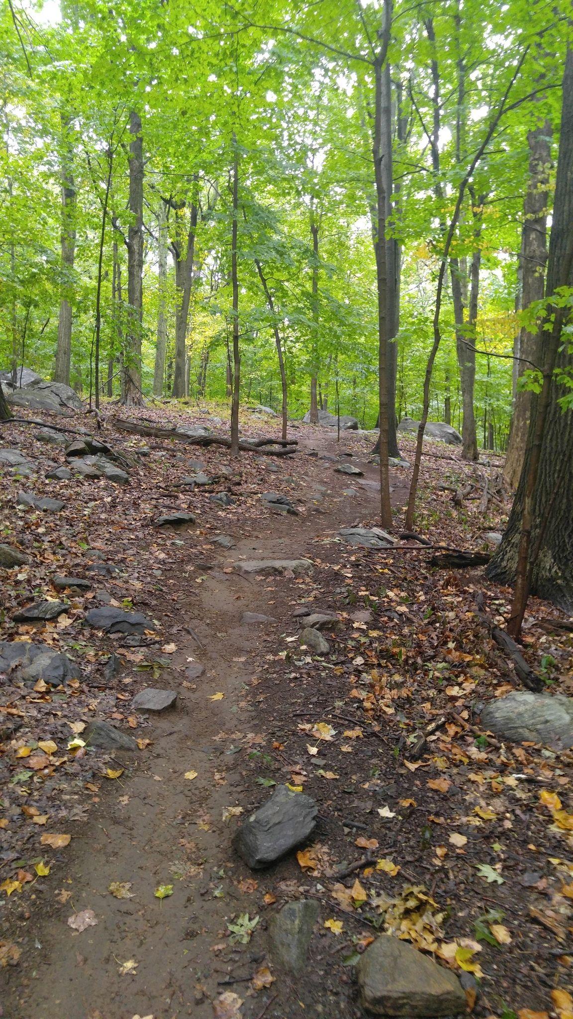 graham-hills-blue-trail