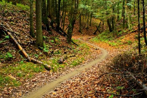 kingdom-trails1
