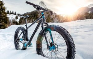 Why You Need to Try Fat Biking